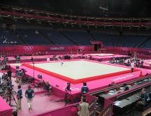 Olympic games London 2012 - Gymnastics competition