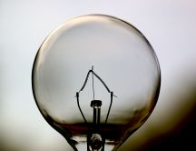 Light bulb inside - amazing discovery