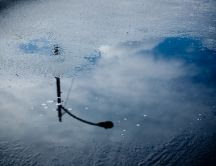 Water mirror on asphalt HD wallpaper