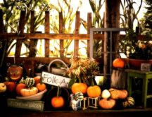 Welcome to the Pumpkin Garden