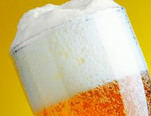 Perfect white beer foam HD wallpaper