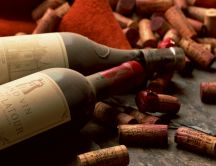 Old dusty wine bottles HD wallpaper