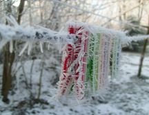 It's winter - ice icicles on clothes clips HD wallpaper