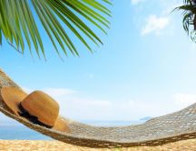 Perfect day to relax on a hammock HD wallpaper