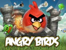 Game of the Year - Angry Birds Hd wallpaper