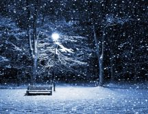 Night - snow over the park HD wallpaper