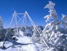 Wooden bridge on a snowy mountain top HD wallpaper