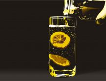 Slices of lemon in a glass of water HD wallpaper