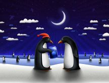 Penguins on ice on moonlight HD wallpaper