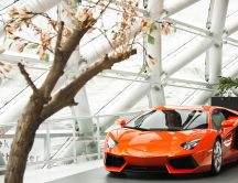 The new Lamborghini LP700 - orange car