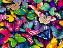 Lots of colorful butterflies - HD wallpaper