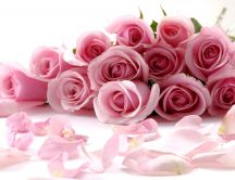 A gorgeous bouquet of pink roses HD wallpaper