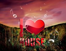 I love house music -HD wallpaper