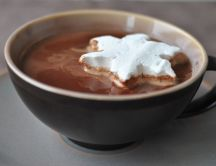 Hot chocolate with truffles and a star of cream
