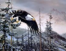 Drawing - eagle flying above the trees full of snow