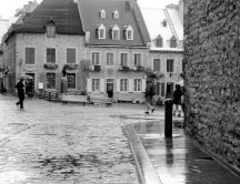 Rain on the cobblestone - Black and white wallpaper