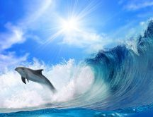Playful dolphin jumps through the waves