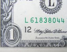 Dollar with signature