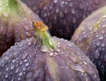 Delicious and refreshing figs - macro HD wallpaper