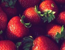 Delicious spring fruits - strawberries