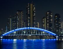 A beautiful bridge illuminated at night - blue light