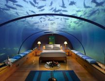 The perfect room under the water