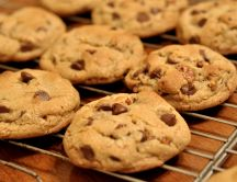 Cookies with chocolate chips - delicious
