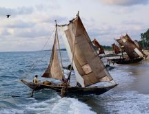 Old sailboats bring food - people fishing on the sea