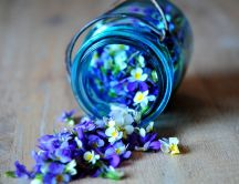 Keep the essence - small blue flowers in a jam