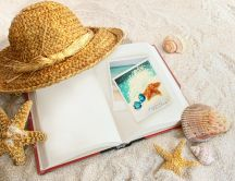The journal of a beautiful summer holiday