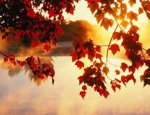 Good morning autumn - sunrise on the lake