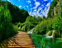 Wooden pontoon in the Heaven garden - HD nature landscape
