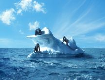 Three monkey on an iceberg in the middle of the cold water