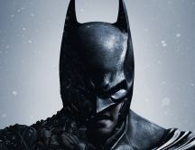 Beautiful black mask on Batman Arkham Origins game