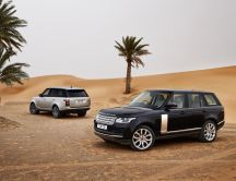 Range Rover in the dessert - beautiful car
