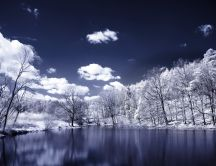 Beautiful winter landscape - cold lake and white trees