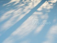 Shadows is the snow - I love winter