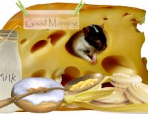 Cheese, milk and cookies - delicious breakfast for mice