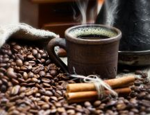 Drink your special coffee with cinnamon every day