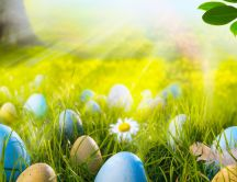 Easter eggs in the sunlight - beautiful HD spring Holiday