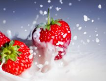 Strawberry dropped in milk - macro HD wallpaper