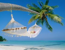 Hammock tied to a palm - relaxing time at the seaside