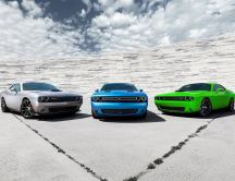 Collection cars - Dodge Challenger 2