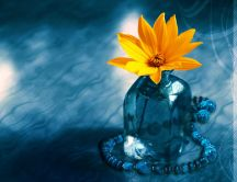 Yellow flower in an ice cube - HD free wallpaper
