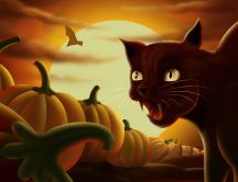 Black cat and lots of pumpkins - Cartoon Halloween