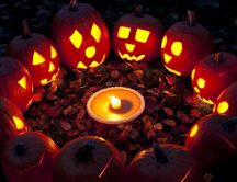 Ritual pumpkins in the forest - Happy Halloween party