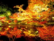 Beautiful lights in the park at night - autumn season