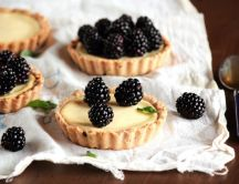 Delicious tarts with blueberries - HD wallpaper