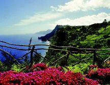 Wonderful island - Madeira with a romantic landscape