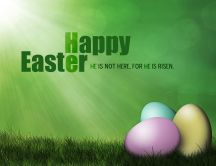 Green spring - Happy Easter Holiday